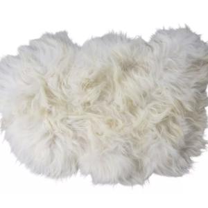 Torshavn langhåret hvit fra Shepherd Sweden