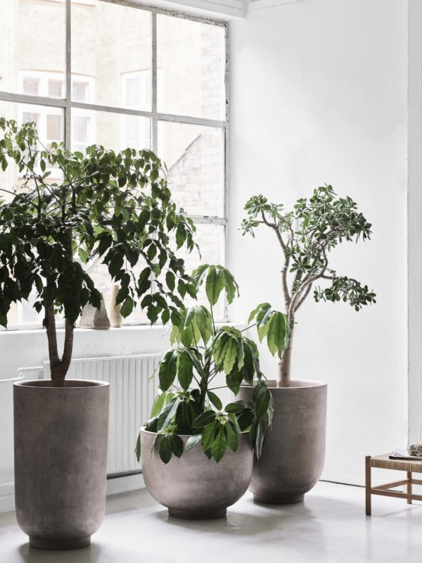 Planter SC43, SC44 og SC45